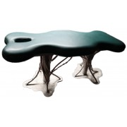 Roots artistic Massage table