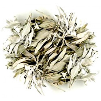 White Sage - Quality loose White sage USA 20g