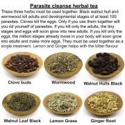 Parasite Cleanse Tea