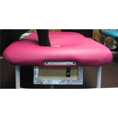 Pregnancy table TrapDoor King Style Lift Up Back