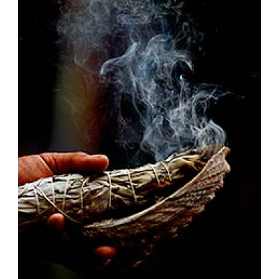 White Sage - Smudge Stick Large USA