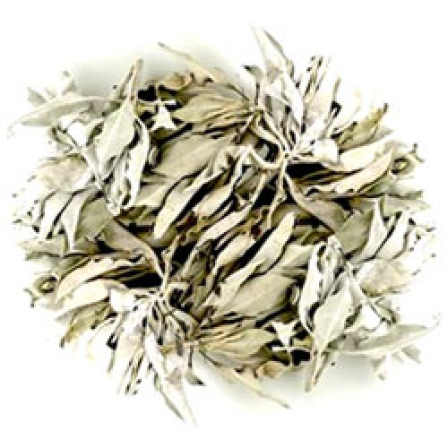 White Sage - Quality loose White sage USA 10g
