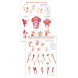 Trigger Points Chart set